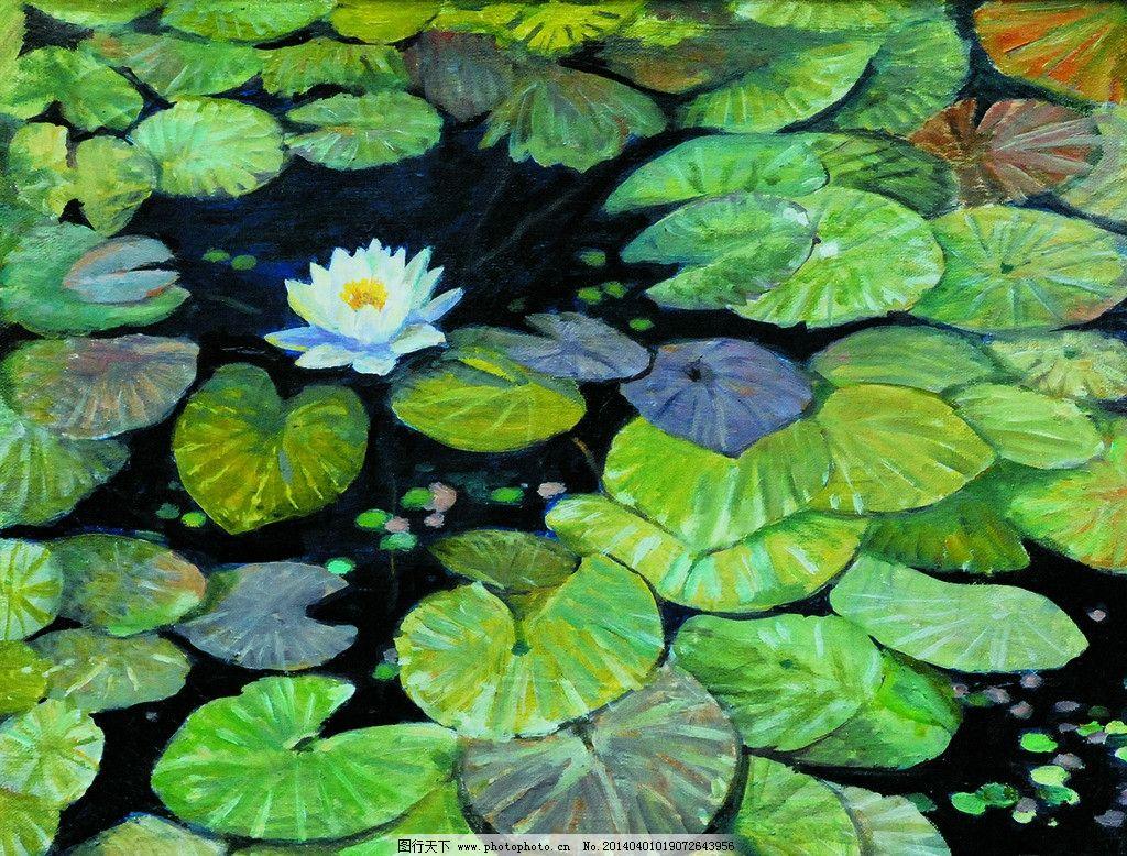 夏莲 美术 油画 花卉 莲花 水塘 油画艺术 绘画书法 文化艺术 设计
