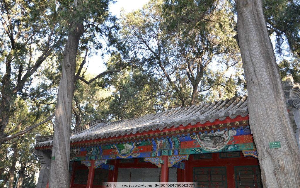 园林建筑 古建筑 树木 红木柱子 皇家建筑 建筑园林 摄影 300dpi jpg