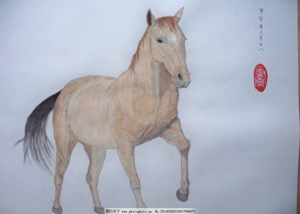 马 水粉画 动物图片