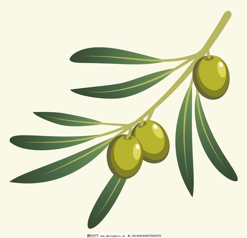 橄榄 营养 手绘 橄榄树 矢量 餐饮美食 生活百科 eps 餐饮美食素材