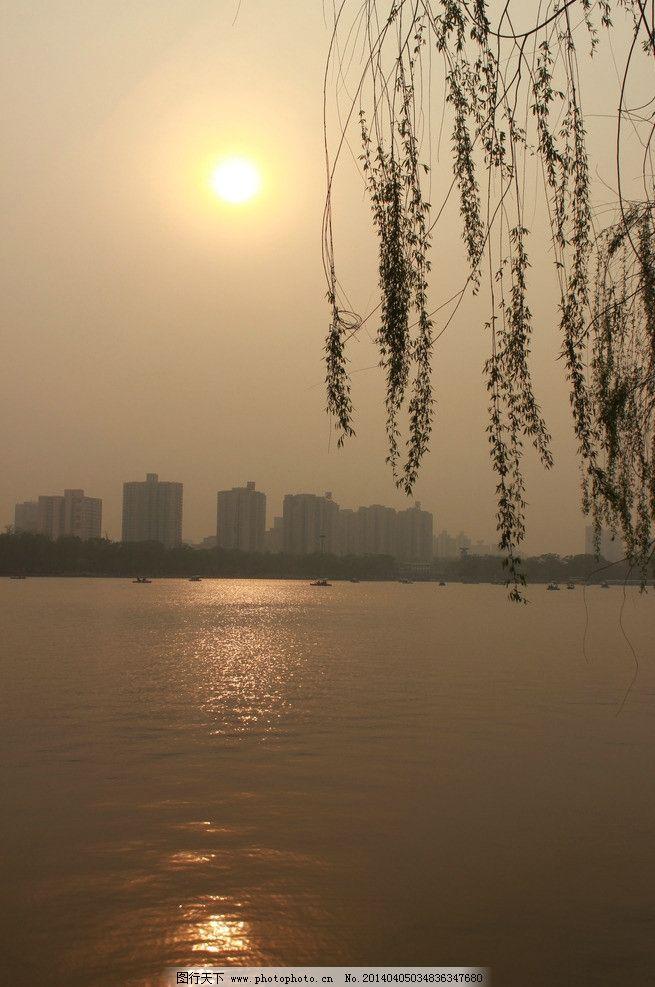 写湖水和柳树的诗句