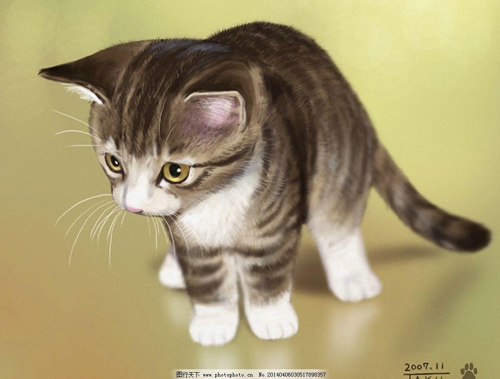 家猫 猫科动物 宠物 宠物猫 花猫 动漫 可爱 其他 动漫动画 设计 100