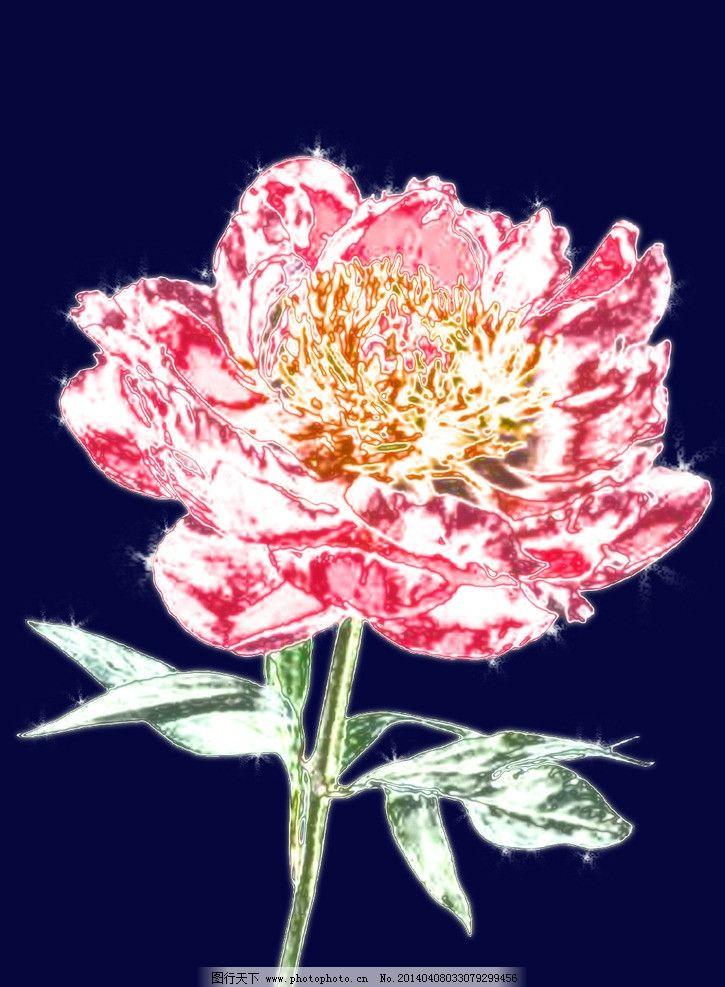 玻璃花 花 玻璃 红色的花