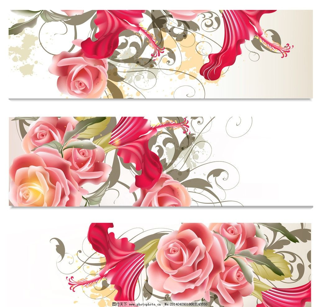 手绘玫瑰花 手绘花卉 手绘花纹 粉红玫瑰 植物花纹 精美花纹 菜单