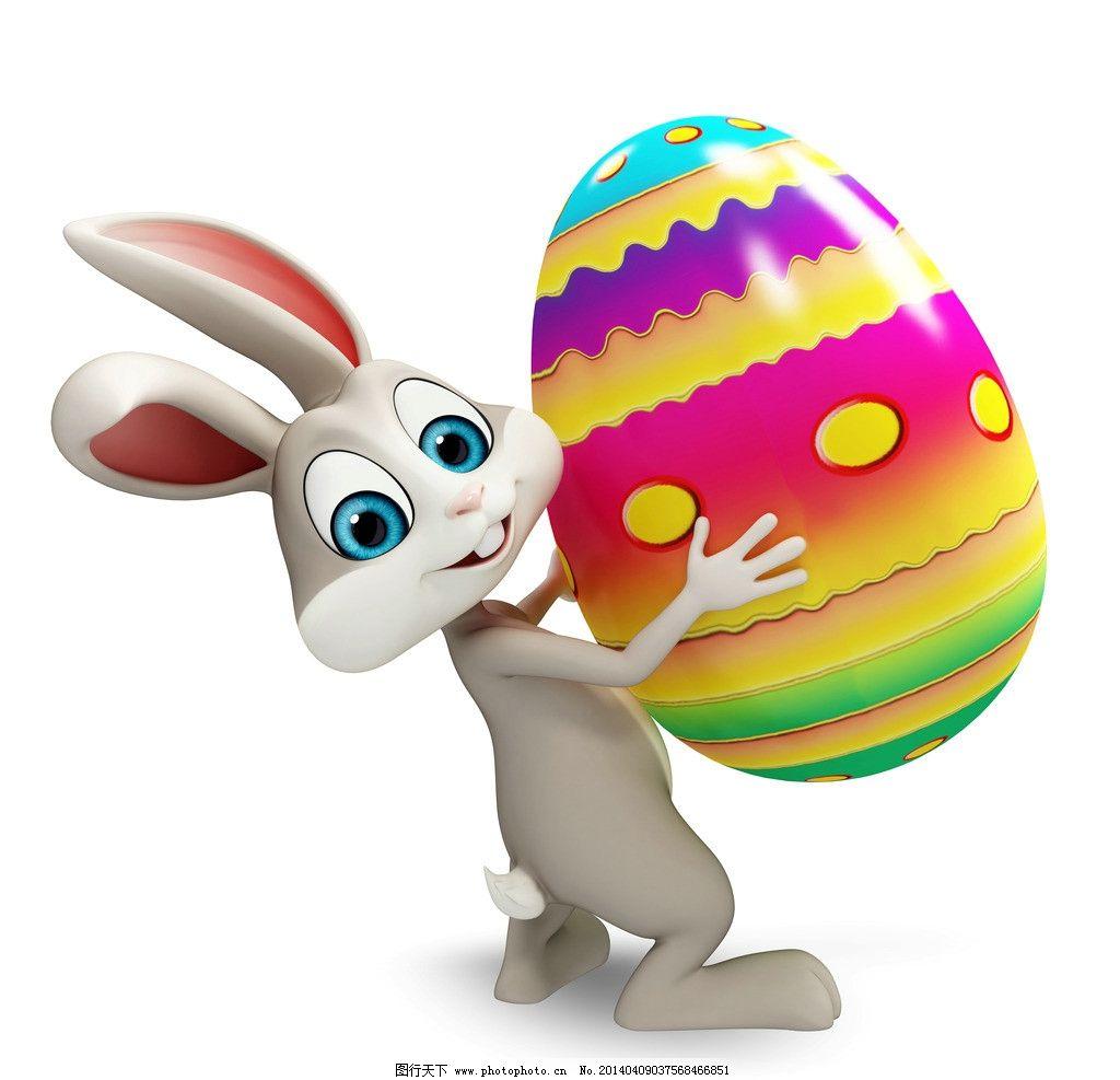 可爱兔子 图片大全 高清图片