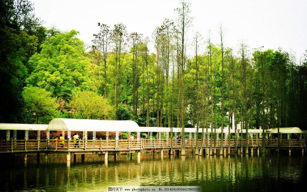 植物园景图片