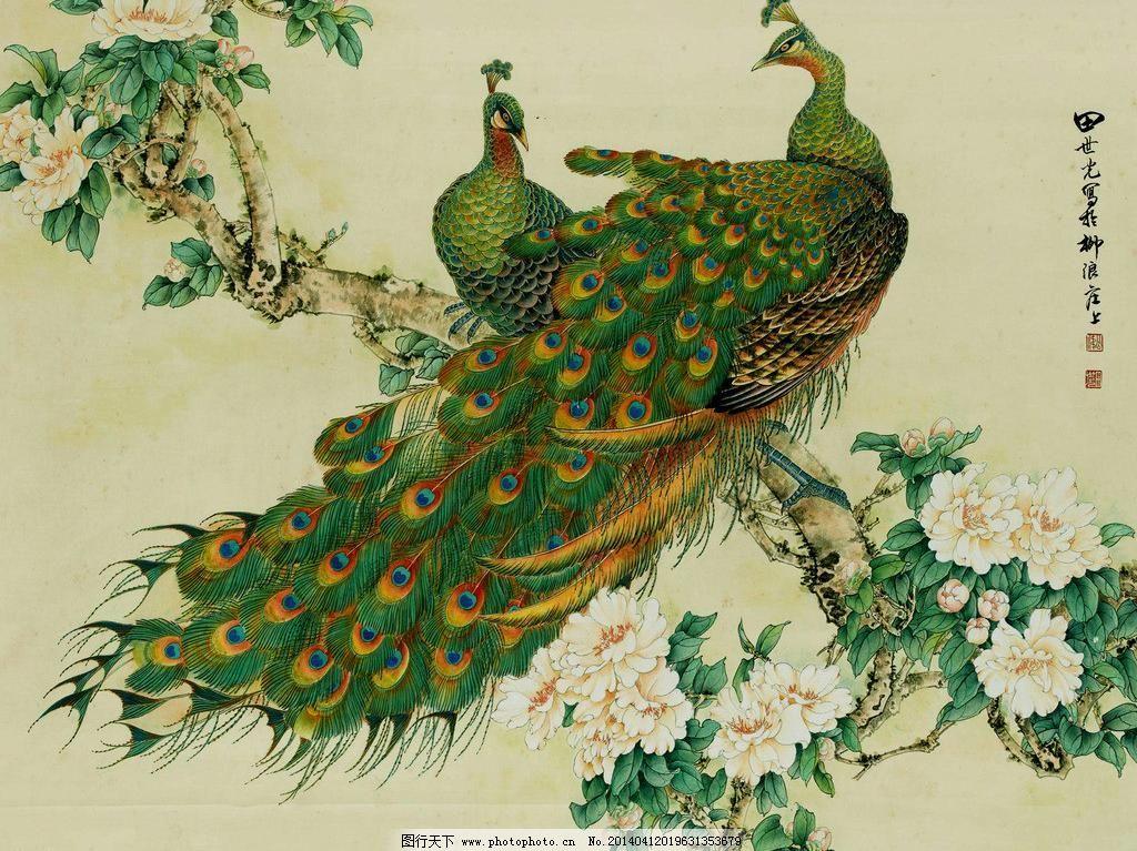 富贵花开模板下载 富贵花开 孔雀 飞禽 羽翼 羽毛 动物 牡丹 花朵