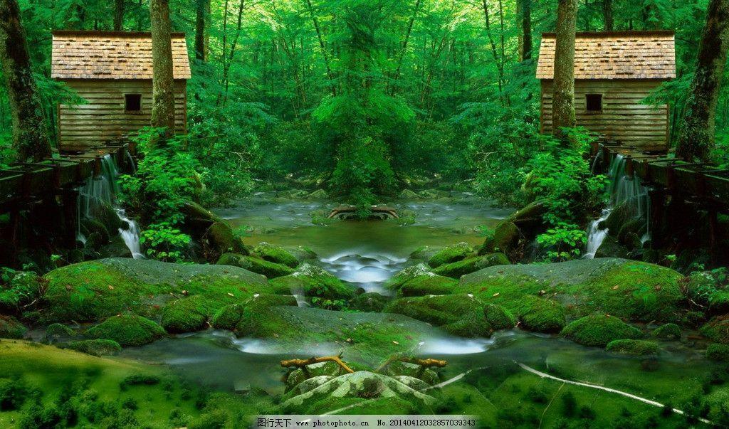 绿色森林图片图片