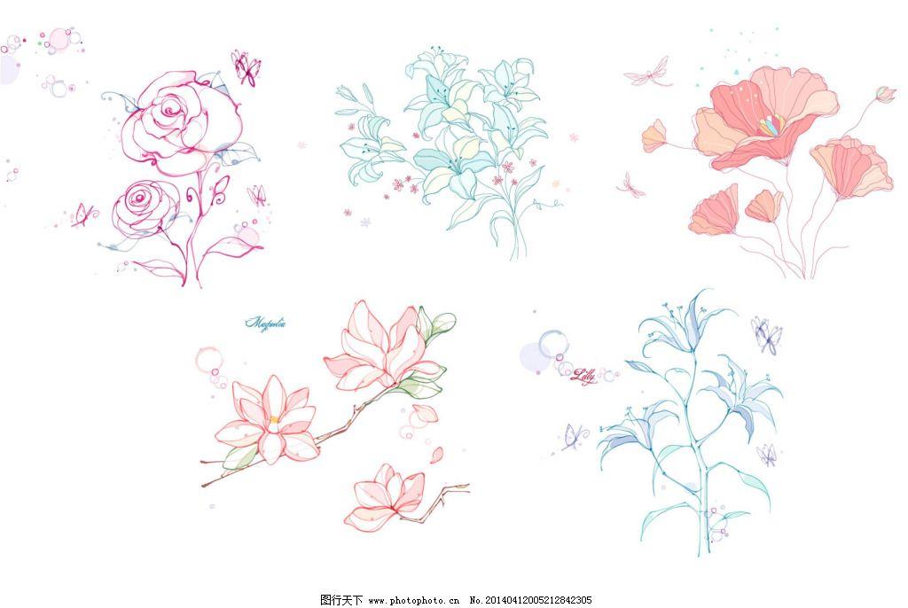 花朵 木兰花 手绘 素描 唯美 植物 唯美 素描 手绘 花朵 木兰花 百合