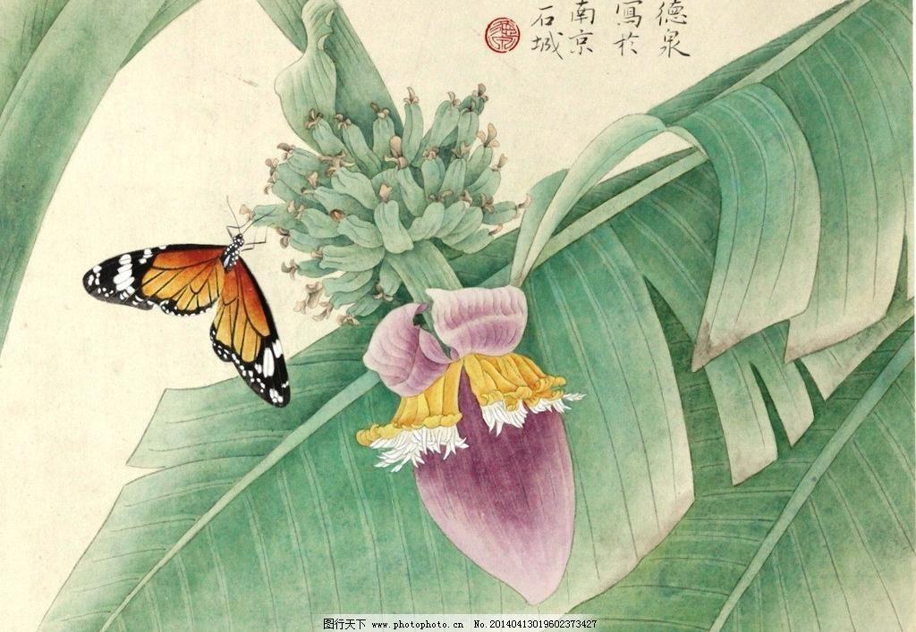 彩蝶 彩蝶图片免费下载 芭蕉 工笔画 国画 蝴蝶 花鸟画 绘画书法