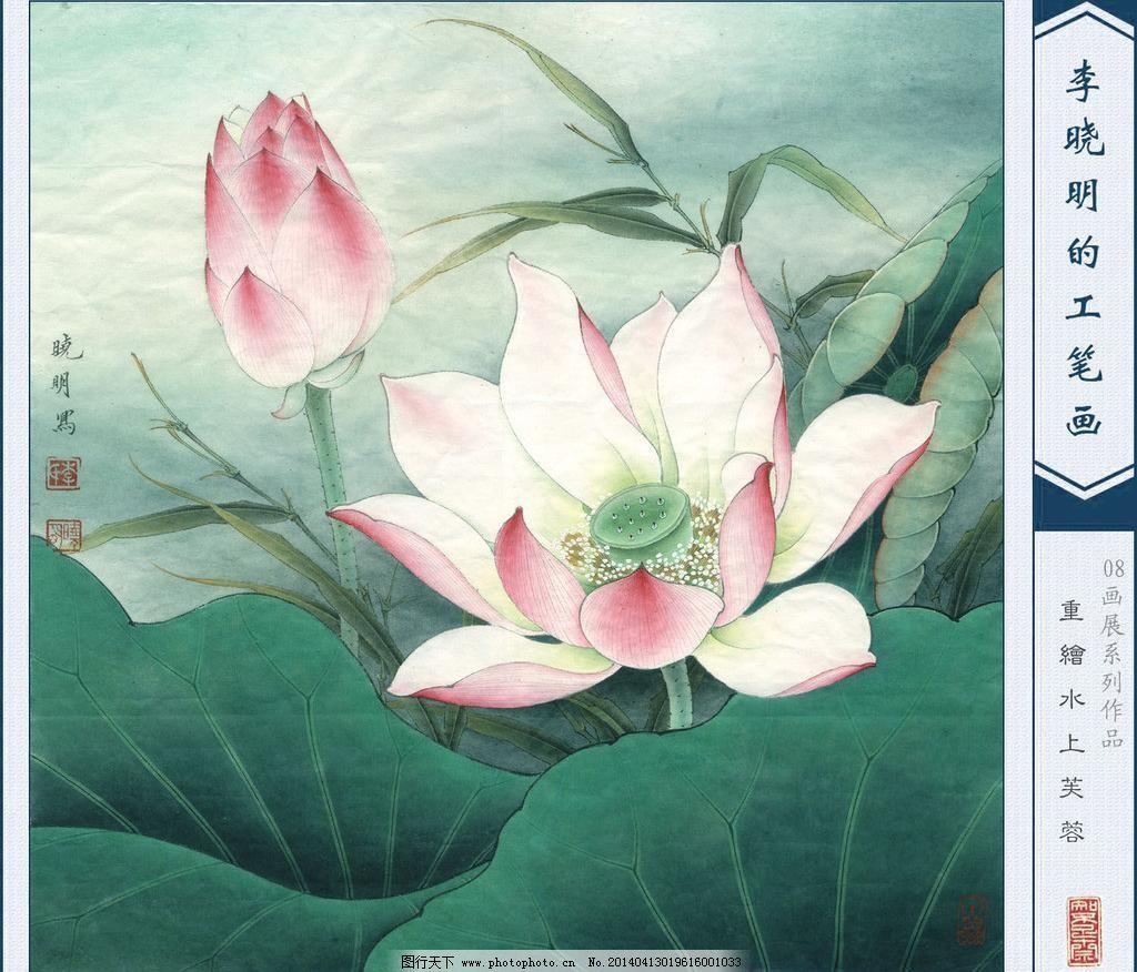 72dpi jpg 工笔画 国画荷花 荷花 绘画 绘画书法 设计 文化艺术 中国