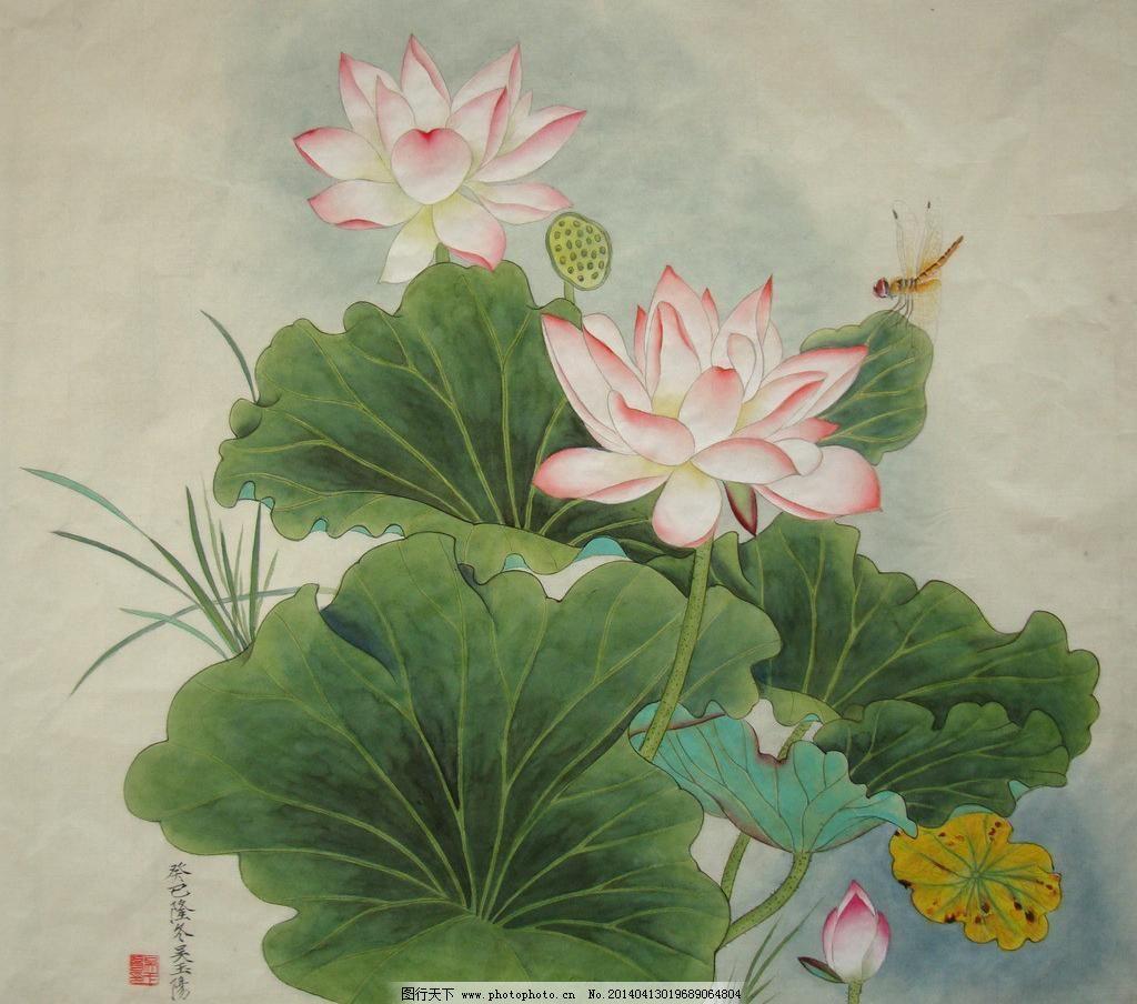 吴玉阳工笔画荷花蜻蜓图片
