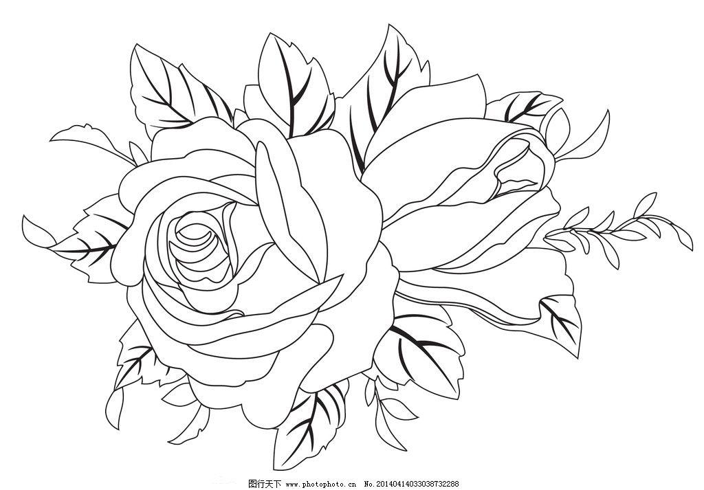 黑白玫瑰花朵