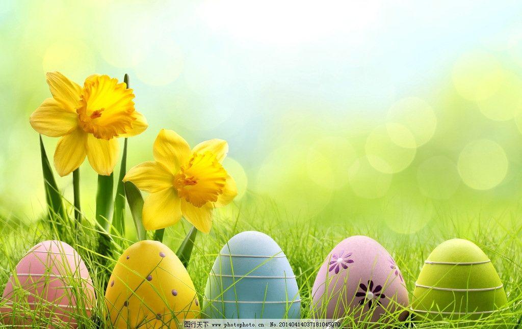 彩蛋 鸡蛋 彩色 彩绘 小花 野花 草地 绿地 复活节 春天 生活娱乐图片