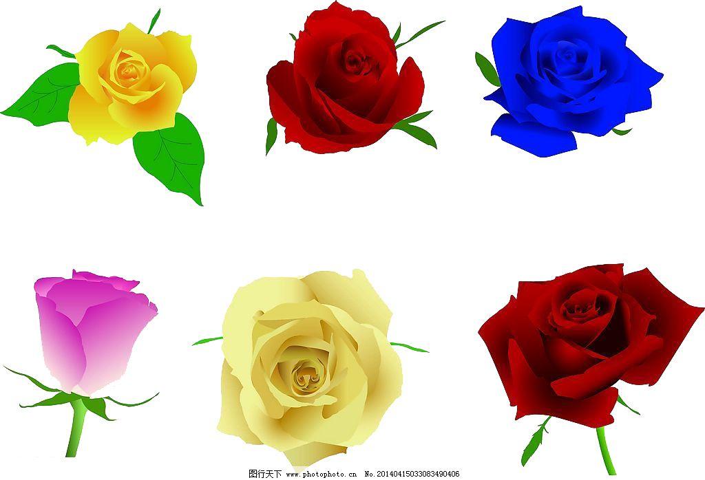 彩色花朵免费下载 psd psd素材 蓝色妖姬 玫瑰 psd 玫瑰 蓝色妖姬 psd