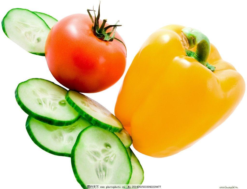 辣椒植物平面图例手绘