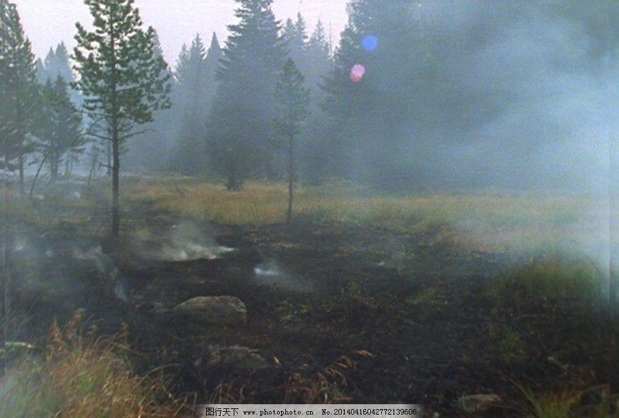 火烧山免费下载 森林 树林 大火 森林 树林 烧山 视频 实拍视频