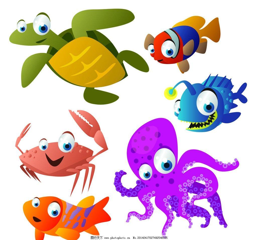 高清海洋动物图片