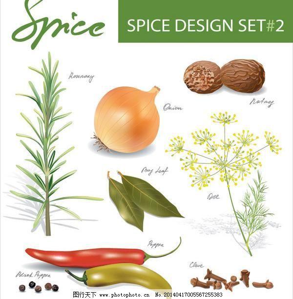 食物调料手绘图模板下载 食物调料手绘图 蔬菜 矢量图 手绘 辣椒