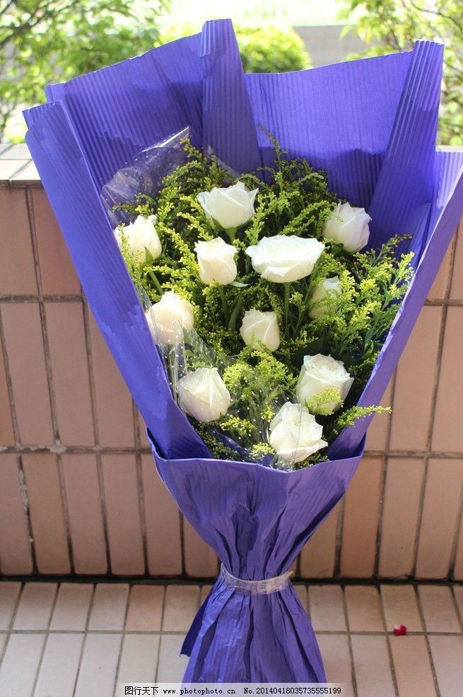 白玫瑰花束 白玫瑰花 白色 花束 紫色包装 毕业典礼     摄影图 花草