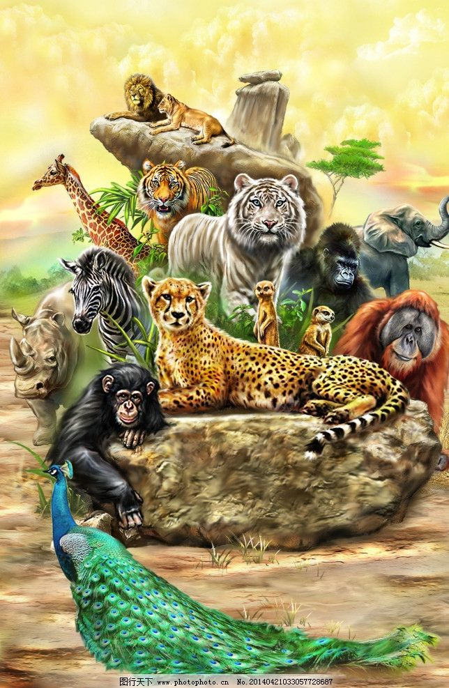 手绘动物世界图片