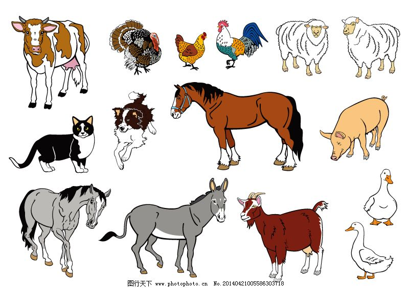 动物 卡通动物 卡通农场 农场 动物 卡通动物 农场 农场动物 卡通农