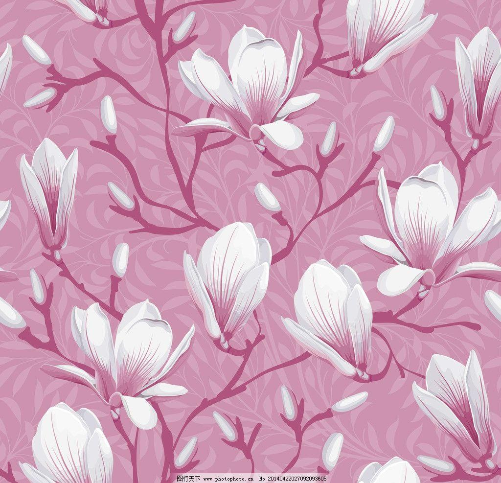 手绘花卉 花卉 花纹花卉 卡片 鲜花 木棉花 白色 梦幻花卉 卡通花卉
