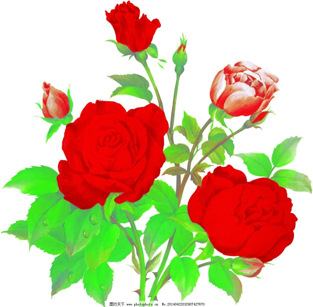 花朵 花瓣 树叶 绿色 红色 背景素材 psd分层素材 源文件 300dpi psd图片