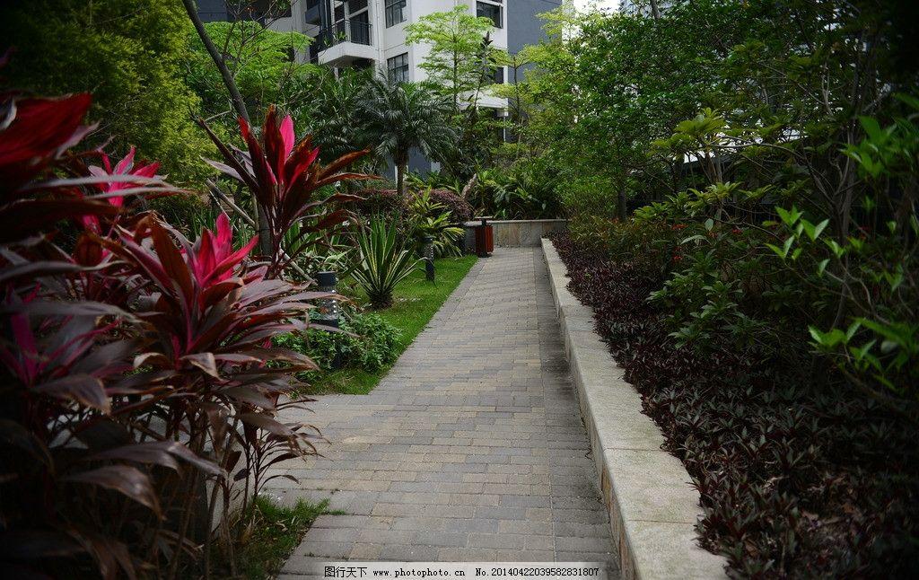 小区景观 小区绿化 园林
