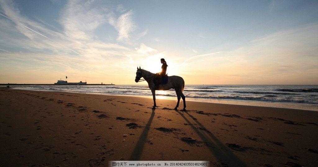 美女骑马 骏马 奔马 马年 沙滩 海边 夕阳 烈马 小动物 动物