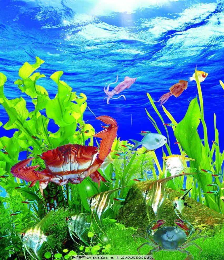 青岛海底世界 珊瑚群 色彩斑斓