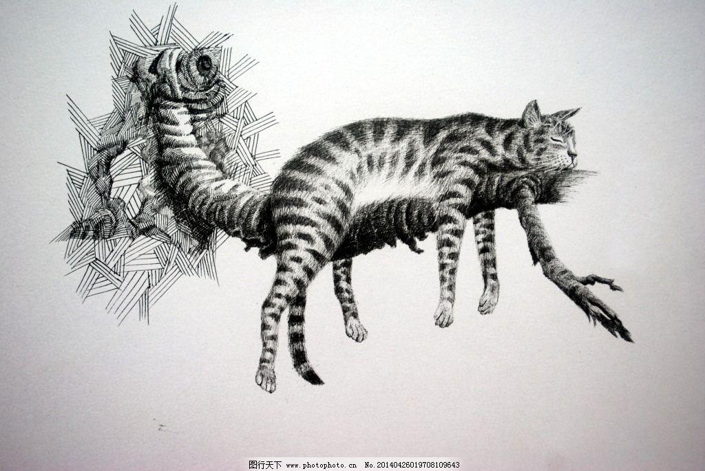 可爱 猫 线描 线条 写生 猫的线描写生免费下载 猫 线描 写生 动物 可