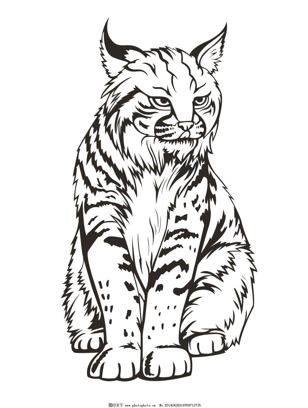 猫的线描写生免费下载 动物 可爱 猫 线描 线条 写生 猫 线描 写生