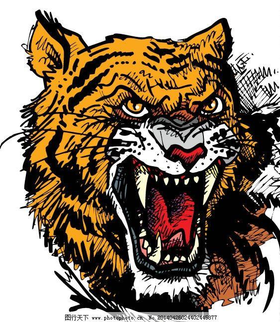 咆哮的老虎 老虎 凶狠 老虎头 咆哮 威猛 野生动物 生物世界 矢量 eps