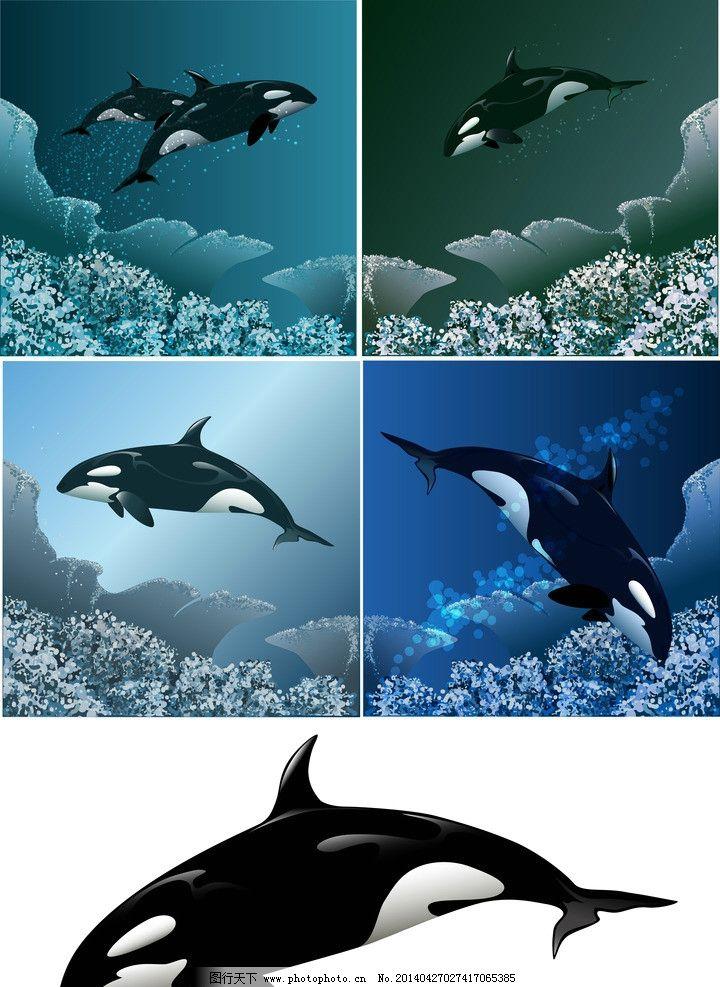 海豚剪影 鲸 动物剪影 海洋动物剪影 海洋鱼类 小海豚 海豚简笔画