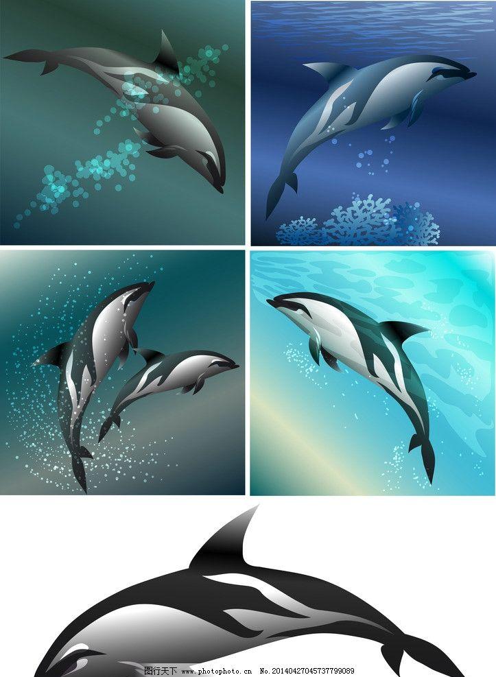 海豚 生物世界 海洋生物 海豚剪影 动物剪影 海洋动物剪影 海洋鱼类