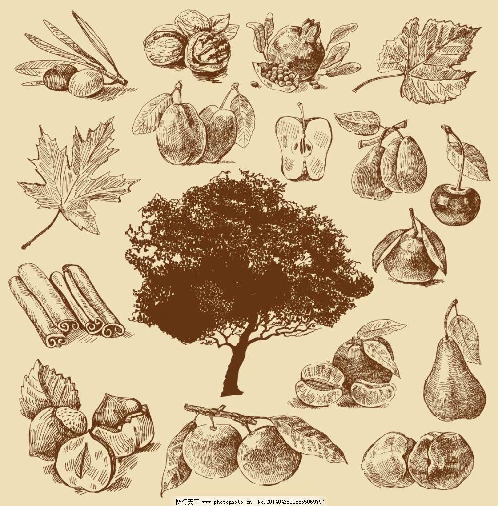 手绘水果免费下载 大树