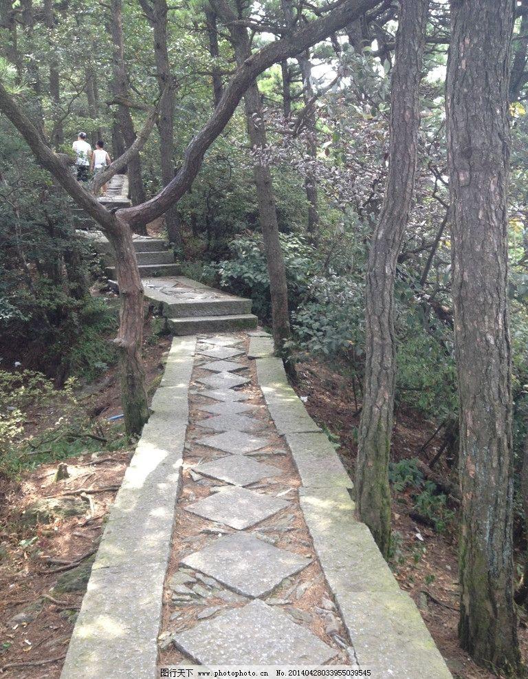 庐山风景区 九江 庐山 风景区 小道 树荫 树林 国内旅游 旅游摄影