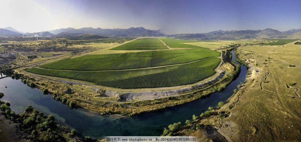 欧洲最大葡萄园全景图片