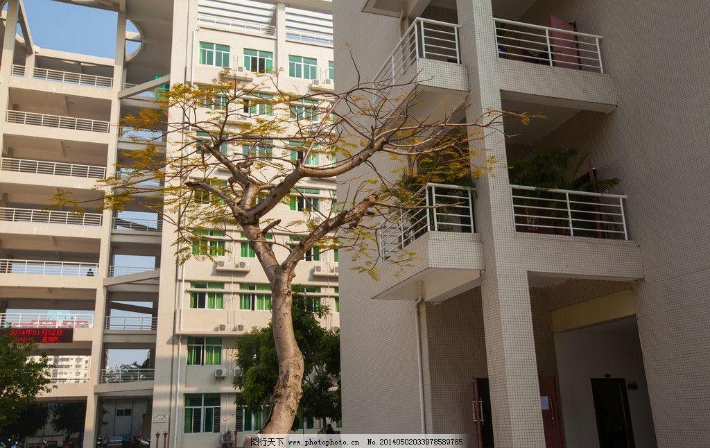 海南大学图片图片