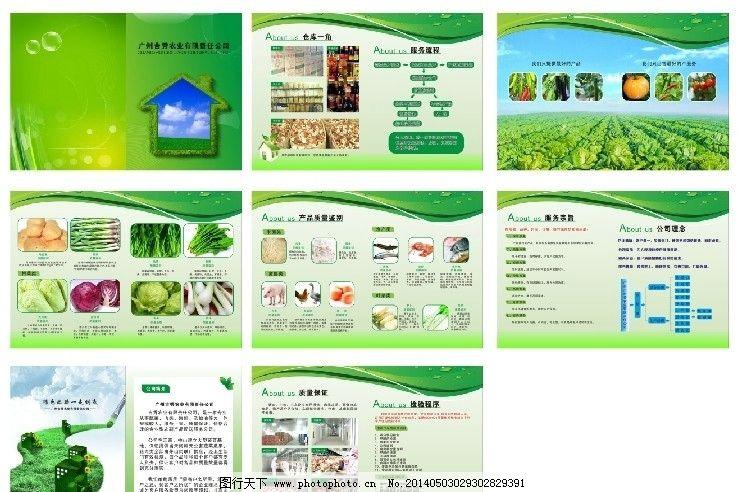 农业画册 绿色 环保 美丽 蔬菜 矢量
