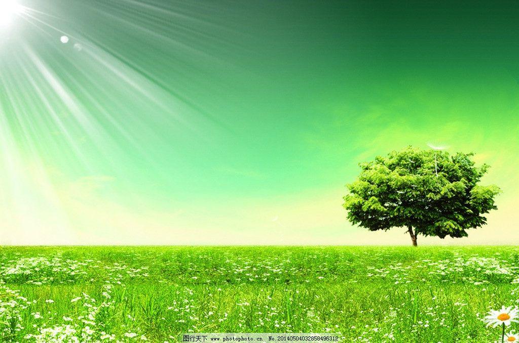 公益图片背景 绿色 背景 大树 草地 阳光 风景 psd分层素材 源文件