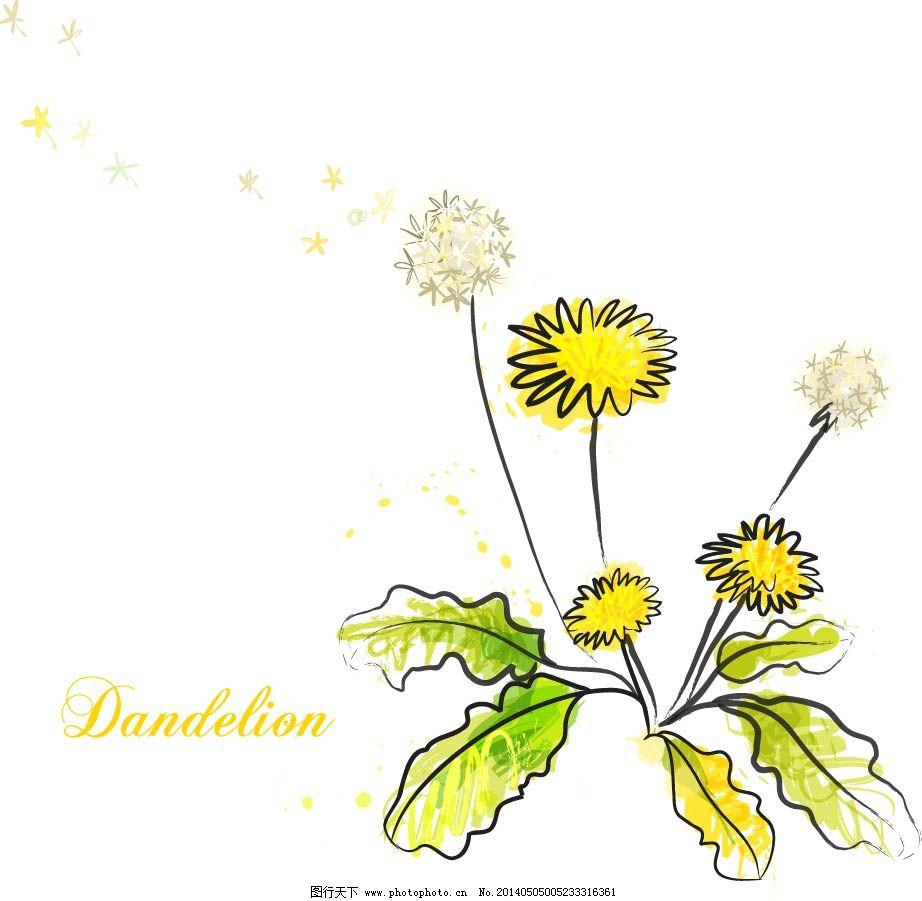 蒲公英免费下载 蒲公英 手绘 植物 手绘 植物 蒲公英 矢量图 花纹花边