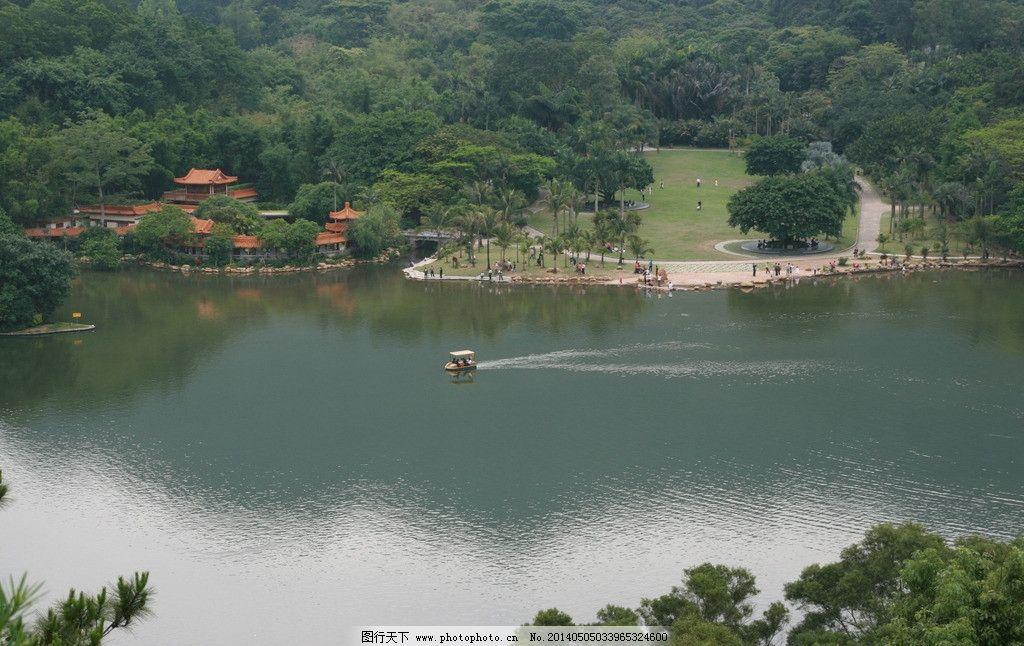 深圳仙湖植物园图片