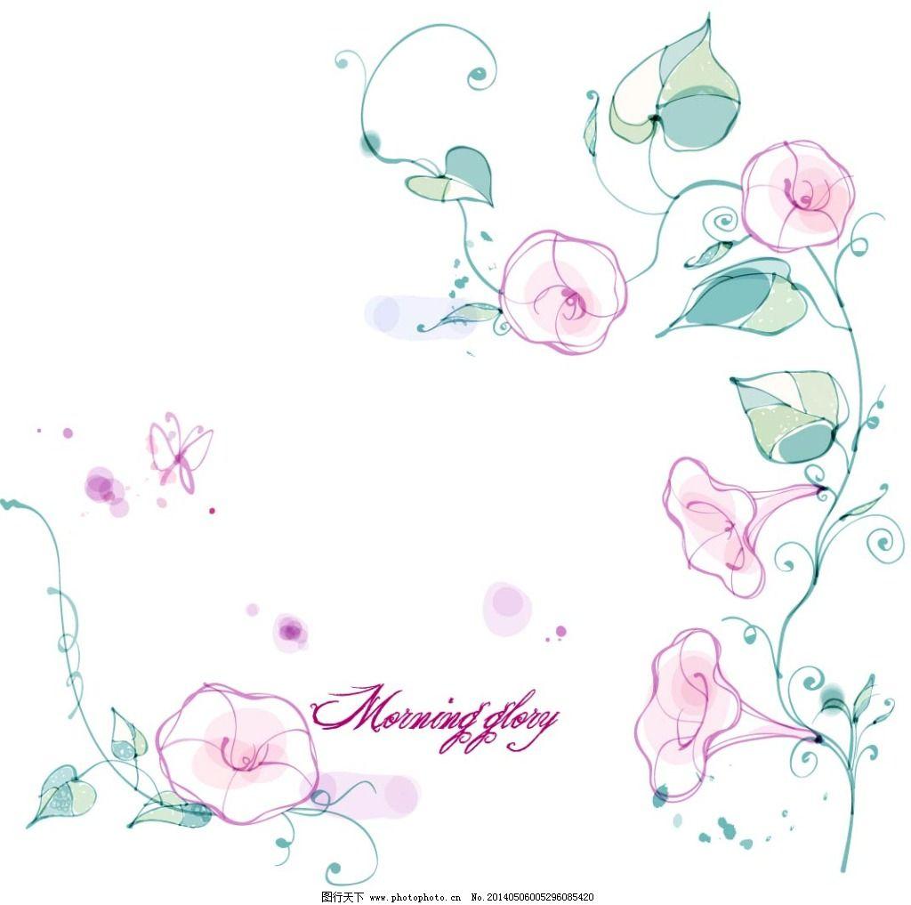 花朵 花卉 牵牛花 手绘 素描 唯美 唯美 素描 手绘 花朵 花卉 牵牛花