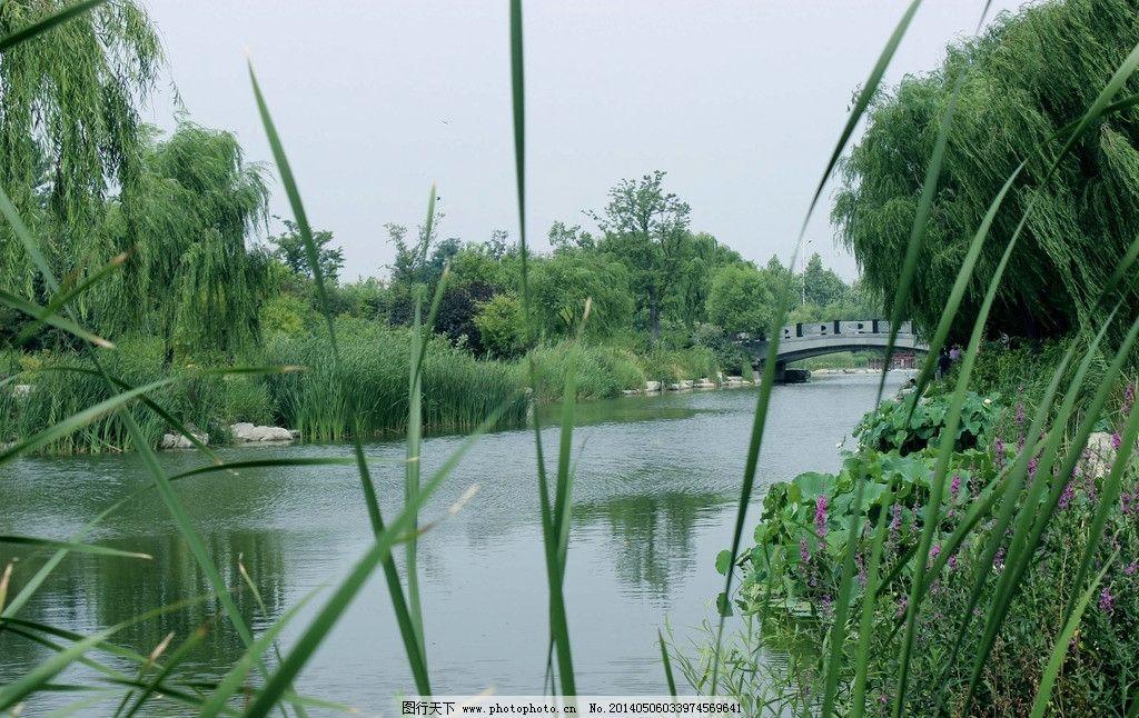 潍坊植物园 河景图片