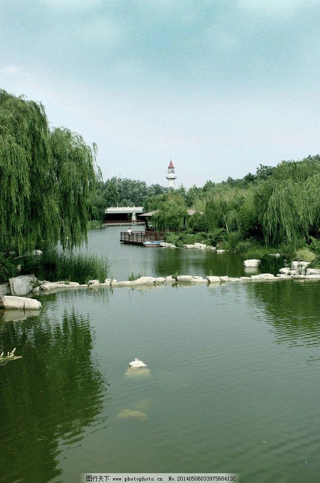 潍坊植物园图片