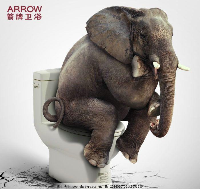 大象 动物 700_663