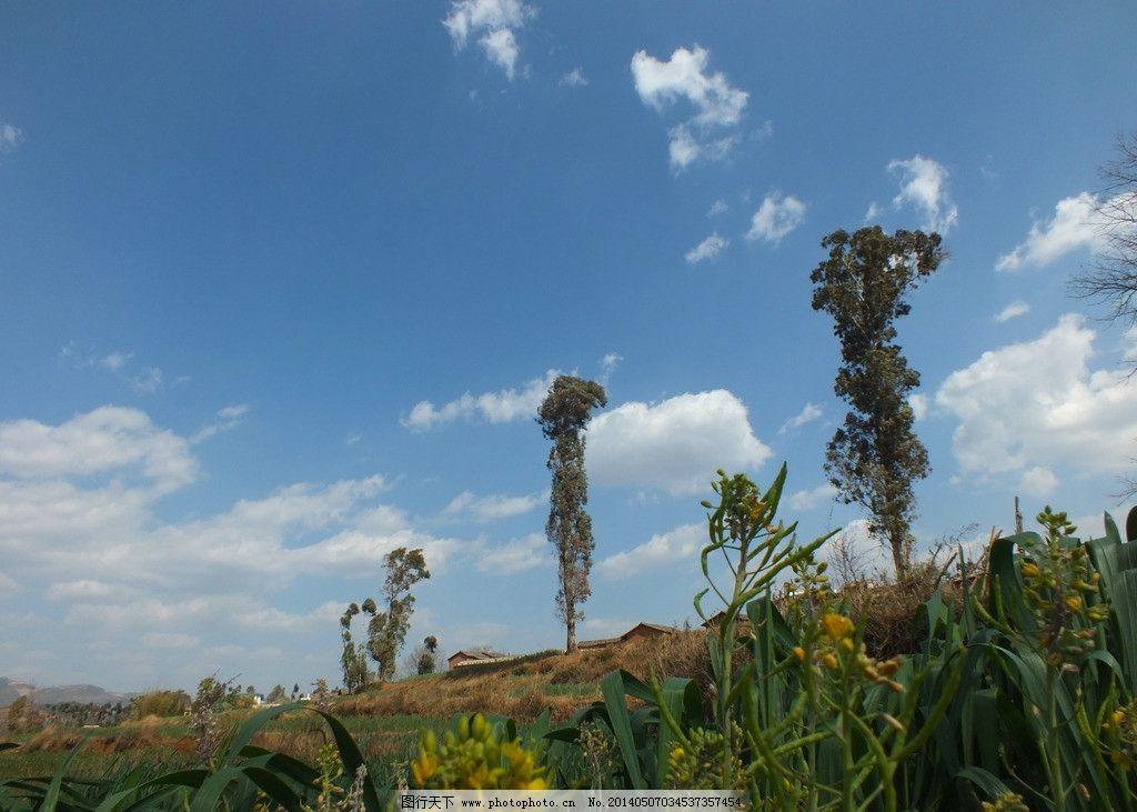 宜良自然景观 云南 风景 摄影