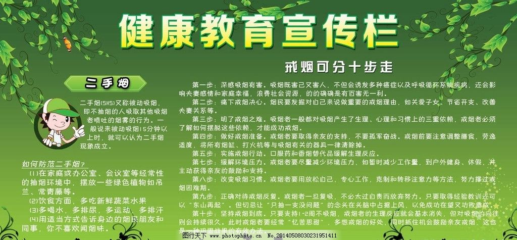 健康教育 健康 教育 宣传 宣传栏 戒烟 二手烟 戒烟步骤 绿色 背景